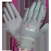 Padua Grey